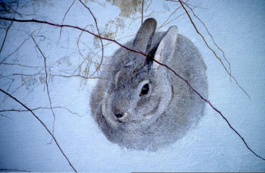 Brier Rabbit Detail - 1999 - Oil On Panel