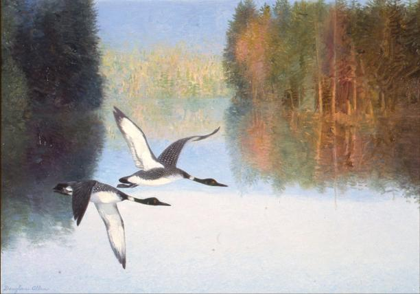 Northern Lake - Loons - 1984 - Oil On Canvas - 18 x 22 - Crum and Forrester Corporate Collection