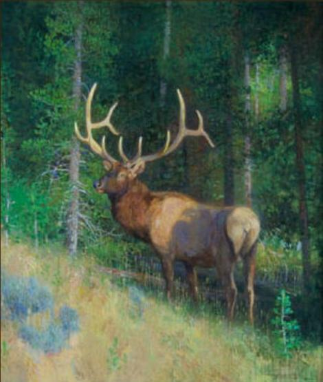 Out of the Shadows - 2011 - Oil On Panel - 14 x 12 - Trailsides Gallery
