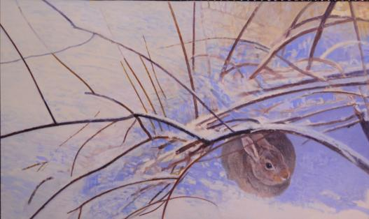 Bea's Bunny - 2005 - Oil On Panel - 14 1/2 x 24